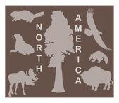 Animal silhouettes - North America - flora & fauna