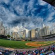 Постер, плакат: Bbt baseball charlotte nc knights baseball stadium and city skyl