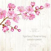 Carta di lable con modello testo e fiore ramo su fondo di legno. illustrazione di vettore