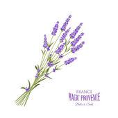 Lavendel elegante Karte
