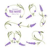 Lavendel-Blüten-Elemente