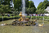 Tourists admire Greenhouse fountain with a sculpture of Triton,