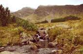 Jahrgang Landschaft der Tatra