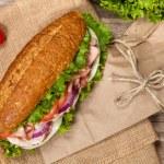 Постер, плакат: Sub Sandwich