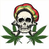 Skull in Rastaman cap and Marijuana leaves Isolated on white background