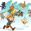 Постер, плакат: A rain with cats and dogs