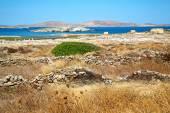 Temple  in delos  historycal acropolis and old