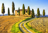 Tuscany scenery. Pictorial countryside, Italy