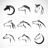 Vector group of horse head design on white background