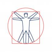 Proportion of human body red and blue linear icon on white background  flat design alternative healing illustration and infographic