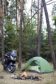 Camping in the woods bike standing next to the tent.
