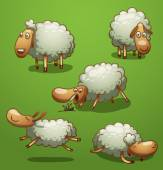 Vector funny sheep set Image of five funny sheeps of gray color in different poses on a bright green background