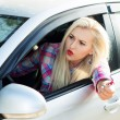 Постер, плакат: Aggression on the road she swears while driving