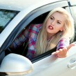 Постер, плакат: Girl shouts while driving