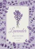 Lavendel-Karte