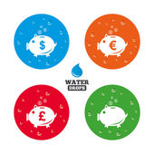 Water drops on button Piggy bank icons Dollar Euro and Pound moneybox signs Cash coin money symbols Realistic pure raindrops on circles Vector