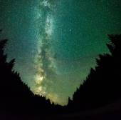 Nigt on mountains forest- with stars, deep sky and milky way
