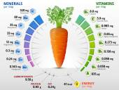Infographics about nutrients in carrot Qualitative vector illustration about vitamins carrot vegetables health food nutrients diet etc It has transparency blending modes mask gradients