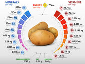 Infographics about nutrients in potato Qualitative vector illustration about potato vitamins vegetables health food nutrients diet etc It has transparency blending modes masks mesh gradients