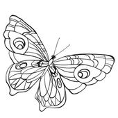 Black and white butterfly with open wings in a top view. Sketch of insect for design and scrapbooking