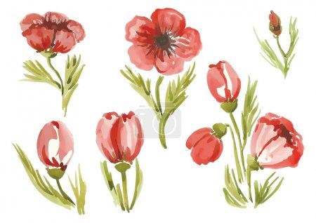 Постер, плакат: Watercolor poppies in different styles, холст на подрамнике