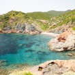 Постер, плакат: Emerald blue water bay near village of Girolata Corsica France
