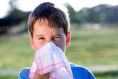 Gyermek, miközben Ön csapást az orrod, fehér zsebkendővel a természetben virágpor allergia