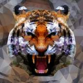 Tiger head (tiger anger) by triangles polygon vector illustration