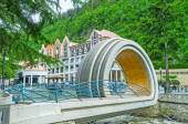 The unusual bridge in Borjomi