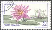 Post stamp printed in ROMANIA