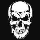 Black and white human skull with a lower jaw