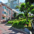 Постер, плакат: San Francisco: details of Lombard Street sharp turns