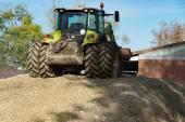 Obilí plodin pro výrobu bioplynu energii