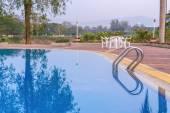 Luxusní bazén s plam strom ráno