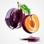 Szilva gyümölcsök