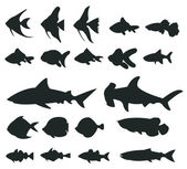 Sets of silhouette Fishes and shark icon set 1 create by vector