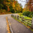 Постер, плакат: Fence and autumn color along the Blue Ridge Parkway in Julian Pr