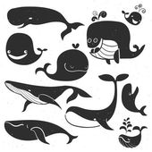 Vintage Whale chalk Characters. Hand drawn vector illustration.