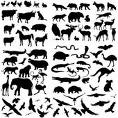 Set of Animals Silhouettes.