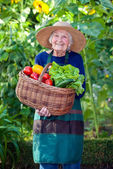 Senior Woman with Basket of Vegetables at Garden