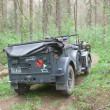 Постер, плакат: German car Horch 901 on retro rally in the woods 3rd international meeting Motors of war near the city Chernogolovka rear view