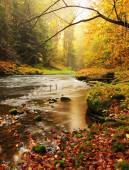 Dreamy sunset above mountain in autumn forest. Colorful mist between trees on river banks.
