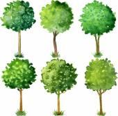 Aquarell blühenden Bäumen
