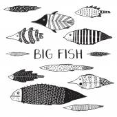 Vector set of big fish on white background