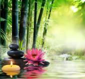 Masáž v přírodě - lilie, kameny, bambusová - zen koncepce