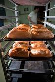 Frissen sült nápolyi sütemény