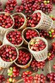 červené fazole čerstvé kávy