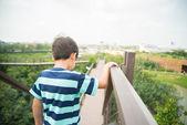 Boy walking on the wood bridge