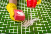 Washing the tiles in the bathroom, cleaning kit apartment, hygienic cleaning, gloves, sponge and powder