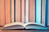 Knihovnička a otevřená kniha